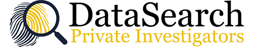 DataSearch Logo